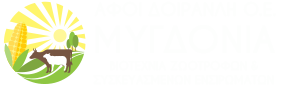 Ενσιρώματα Καλαμποκιού Τριφύλλι πέλλετ